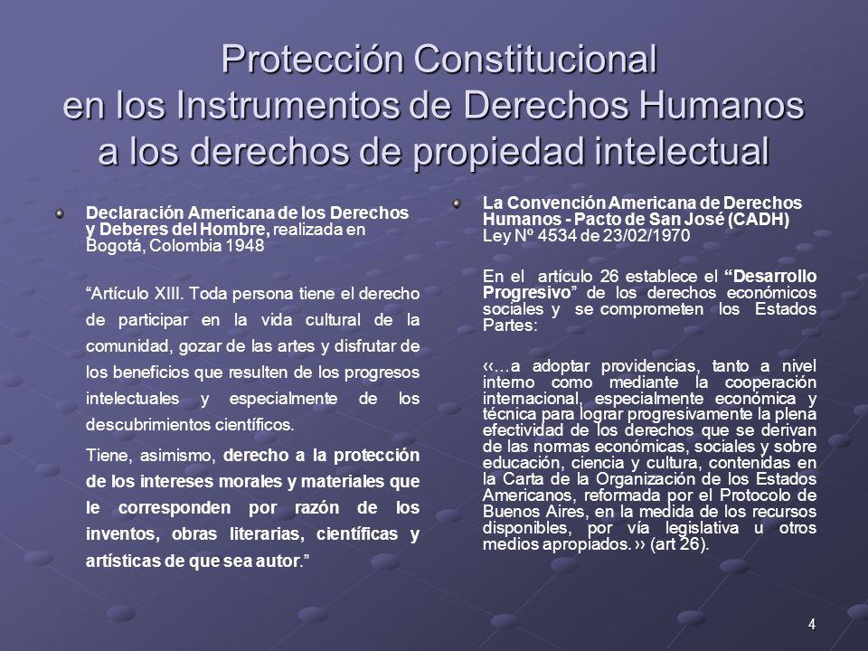4 Protección Constitucional en los Instrumentos de Derechos Humanos a los derechos de propiedad intelectual Protección Constitucional en los Instrumen