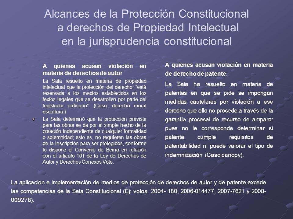 Alcances de la Protección Constitucional a derechos de Propiedad Intelectual en la jurisprudencia constitucional A quienes acusan violación en materia