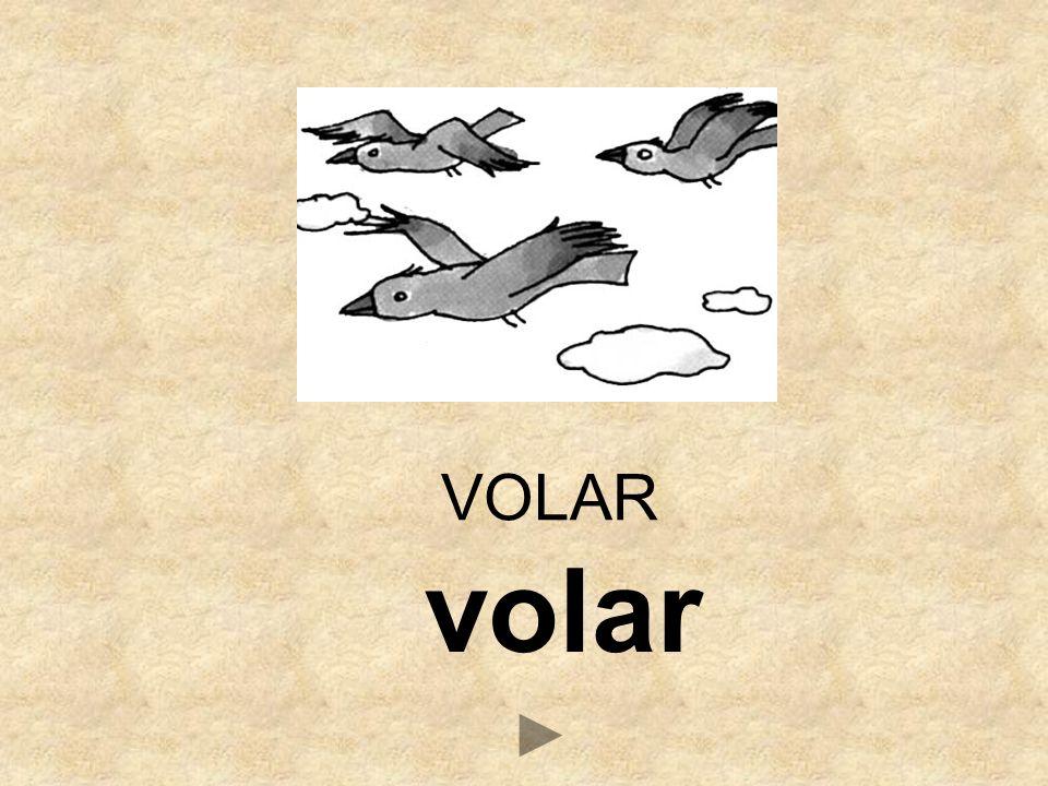 VB _OLAR