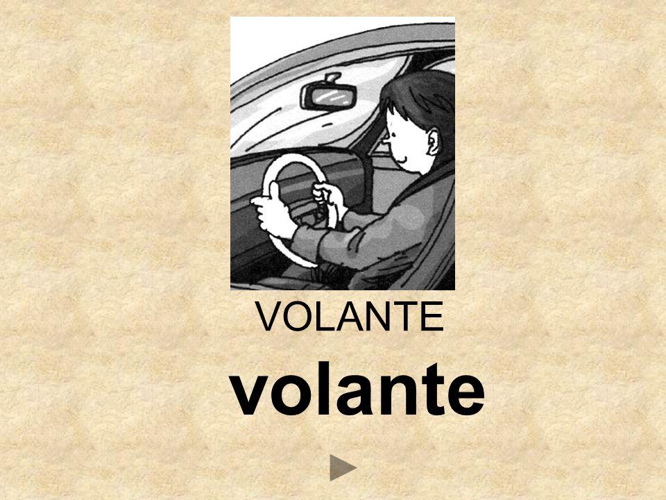 VB _OLANTE