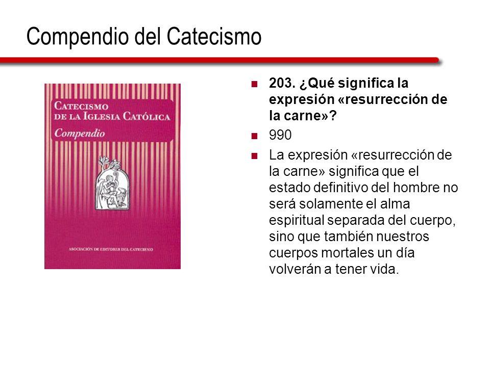 Compendio del Catecismo 203. ¿Qué significa la expresión «resurrección de la carne»? 990 La expresión «resurrección de la carne» significa que el esta