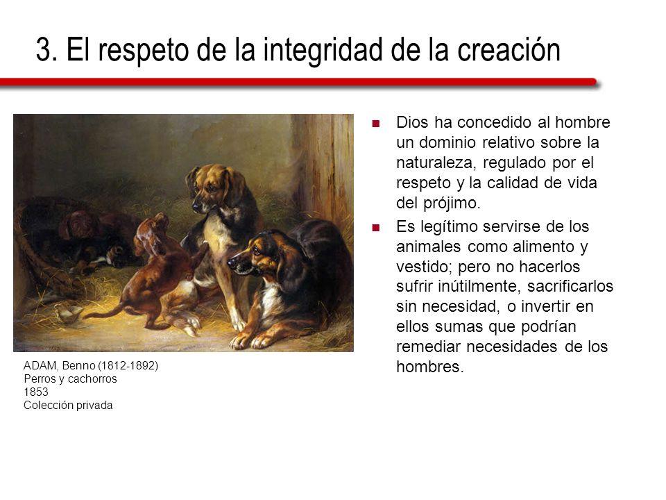 3. El respeto de la integridad de la creación Dios ha concedido al hombre un dominio relativo sobre la naturaleza, regulado por el respeto y la calida