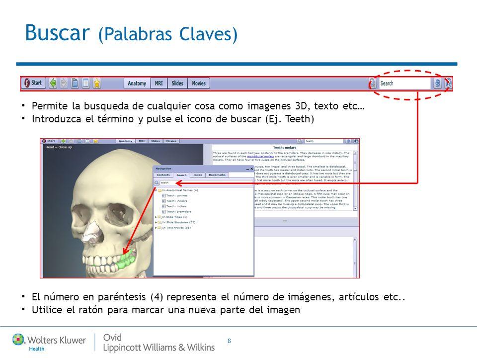 8 Permite la busqueda de cualquier cosa como imagenes 3D, texto etc… Introduzca el término y pulse el icono de buscar (Ej. Teeth) El número en parénte