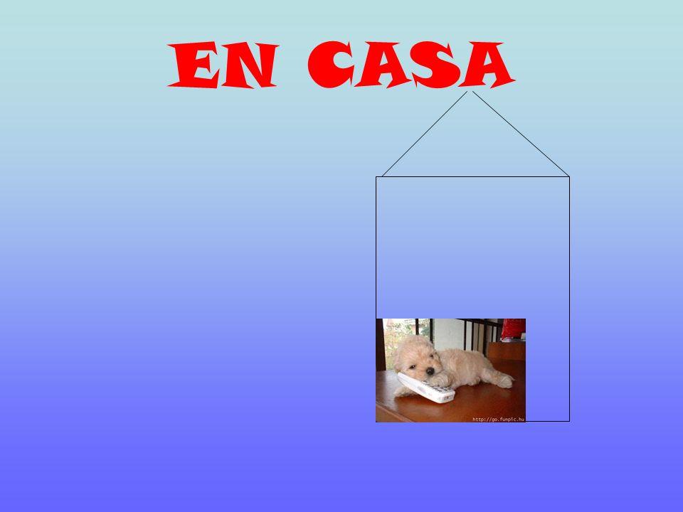 AHORA, UN Ejercicio ¡ Escribe! EN CASA ~ A CASA