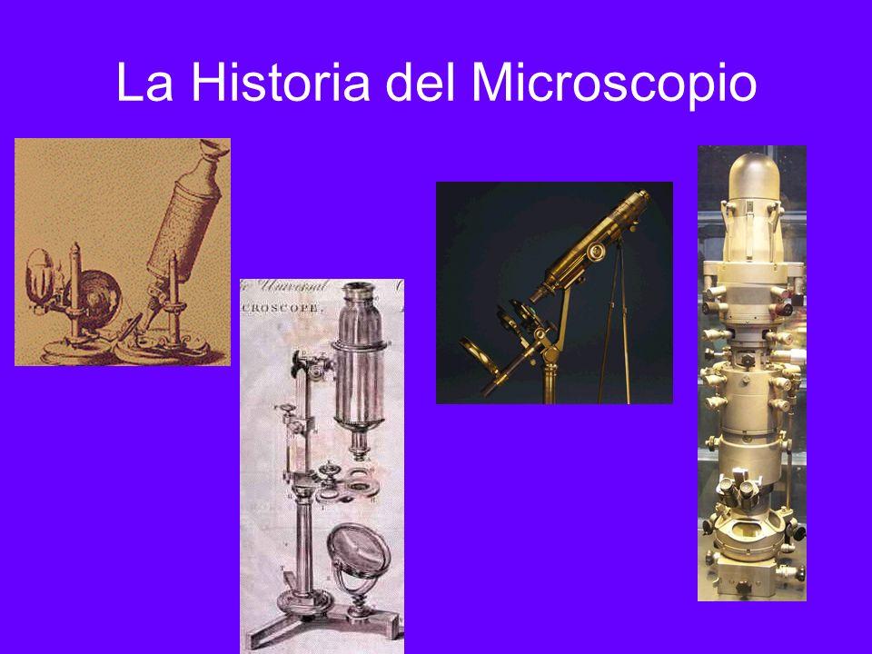 1931 – Ernst Ruska fue el co- inventor del microscopio de electrones y por esto ganó el premio Nóbel de la física en 1986.