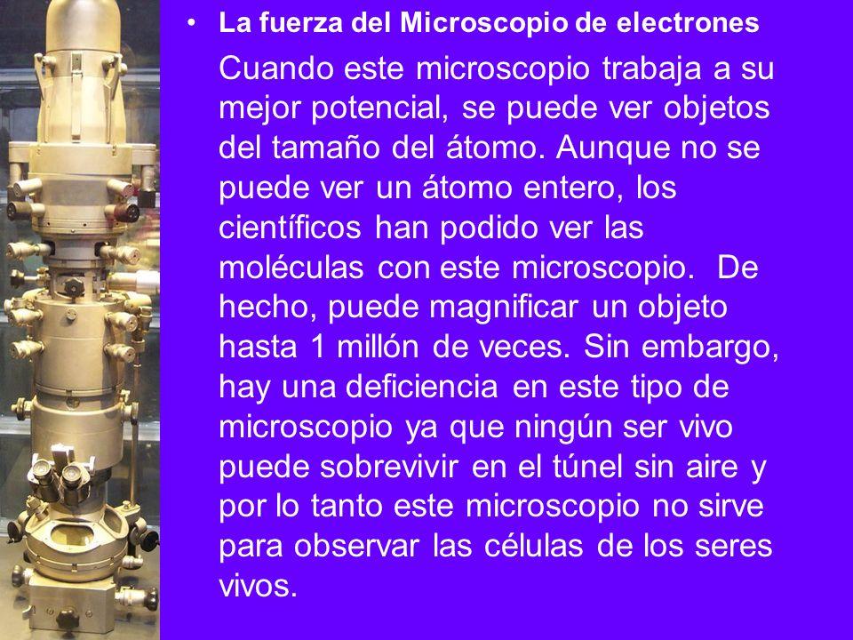 La fuerza del Microscopio de electrones Cuando este microscopio trabaja a su mejor potencial, se puede ver objetos del tamaño del átomo. Aunque no se