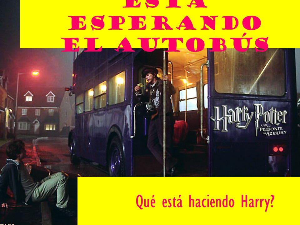 Kathleen Pepin Está Esperando el autobÚs Qué está haciendo Harry