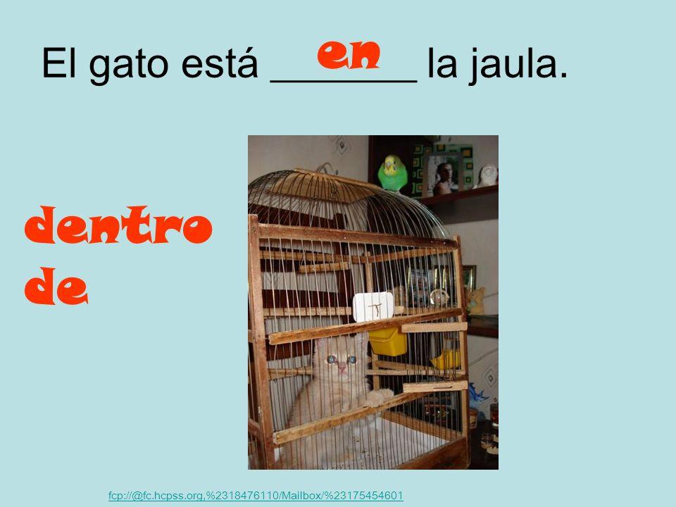 El pájaro está ________ su casa. fcp://@fc.hcpss.org,%2318476110/Mailbox/%23175454601 sobre encima de