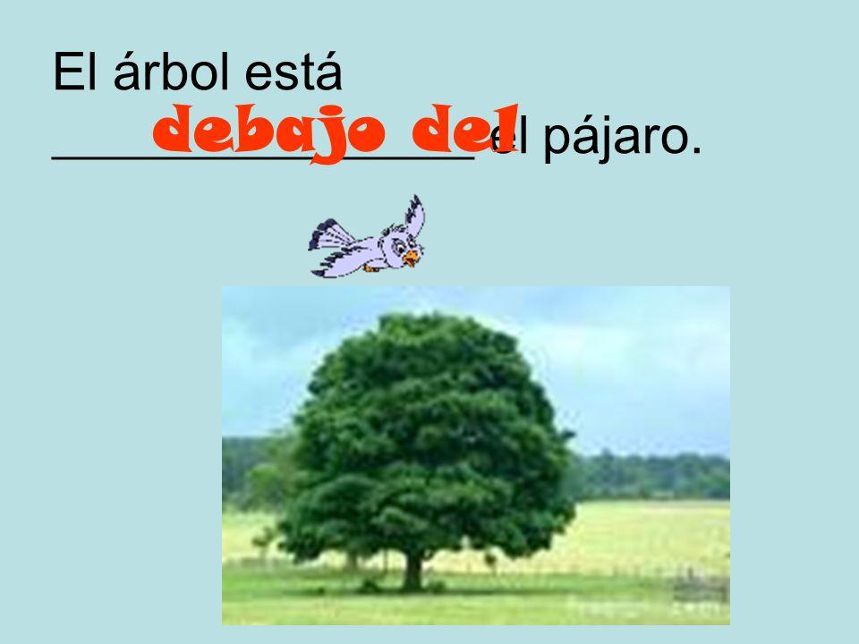 El pájaro está ________________ el árbol. encima del