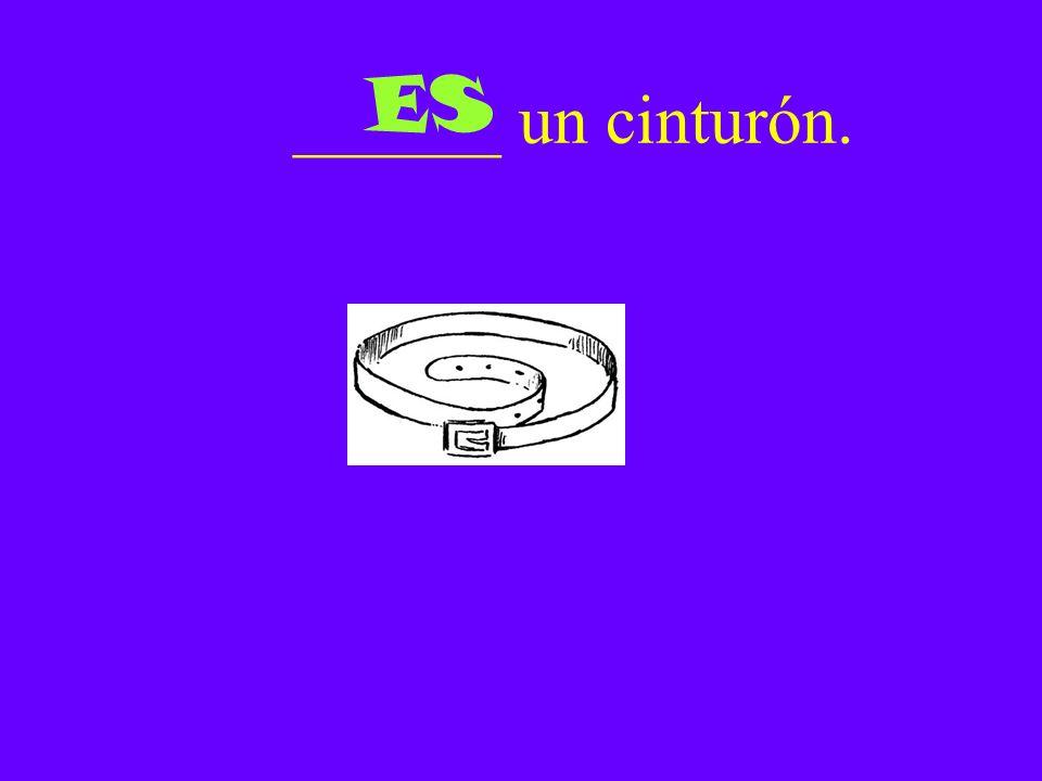 ______ un cinturón. ES