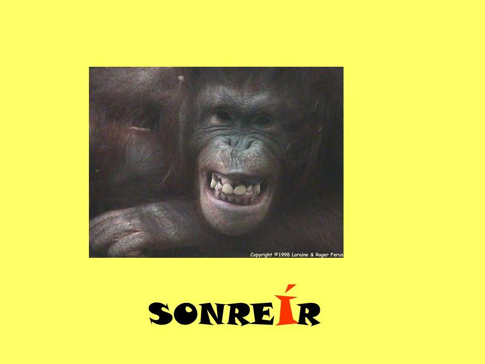 SONRE Í R