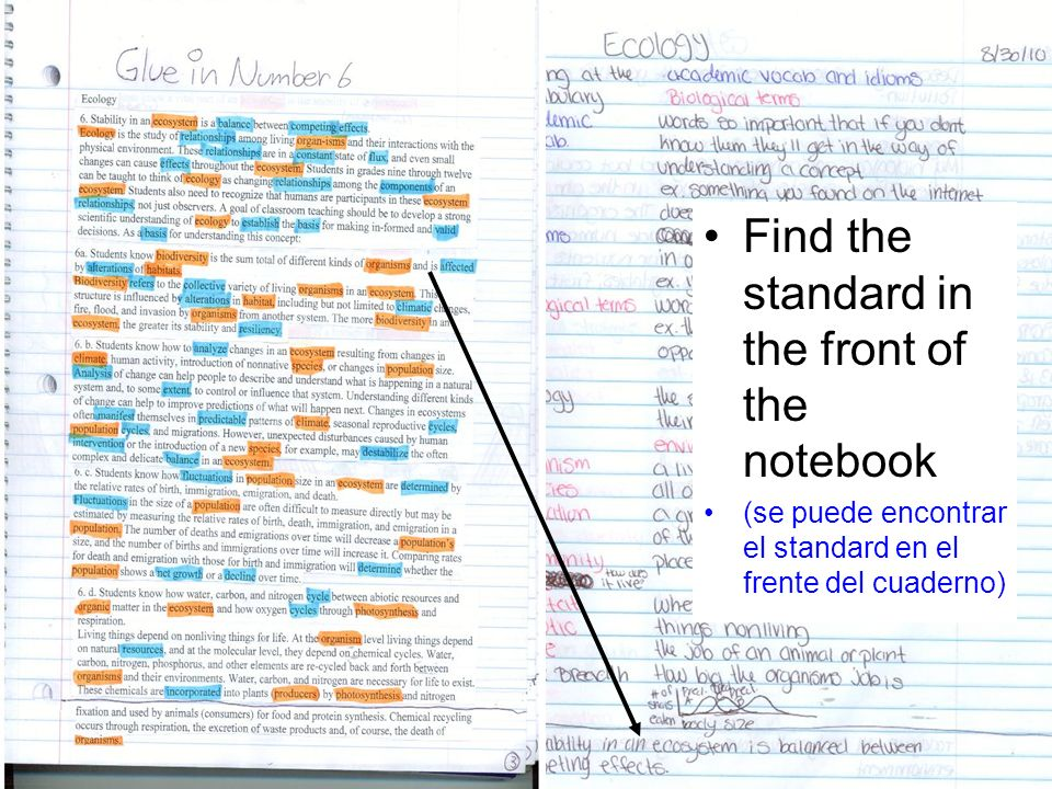 Right Side (Derecho) Take notes in Cornell format. (toman las notas de lectura o del libro) Write the standard at the bottom of the page. (escriben el