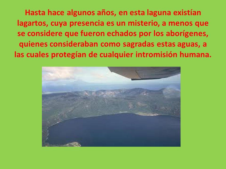 En la actualidad, a pesar de estar protegida por Enacal, la deforestación progresiva en la cuenca sur del Lago de Managua ha disminuido la infiltración y provocado el descenso del manto freático en la llanura subyacente, con la consecuente baja del nivel de la laguna, que alcanzó límites críticos a principios de los años 90.