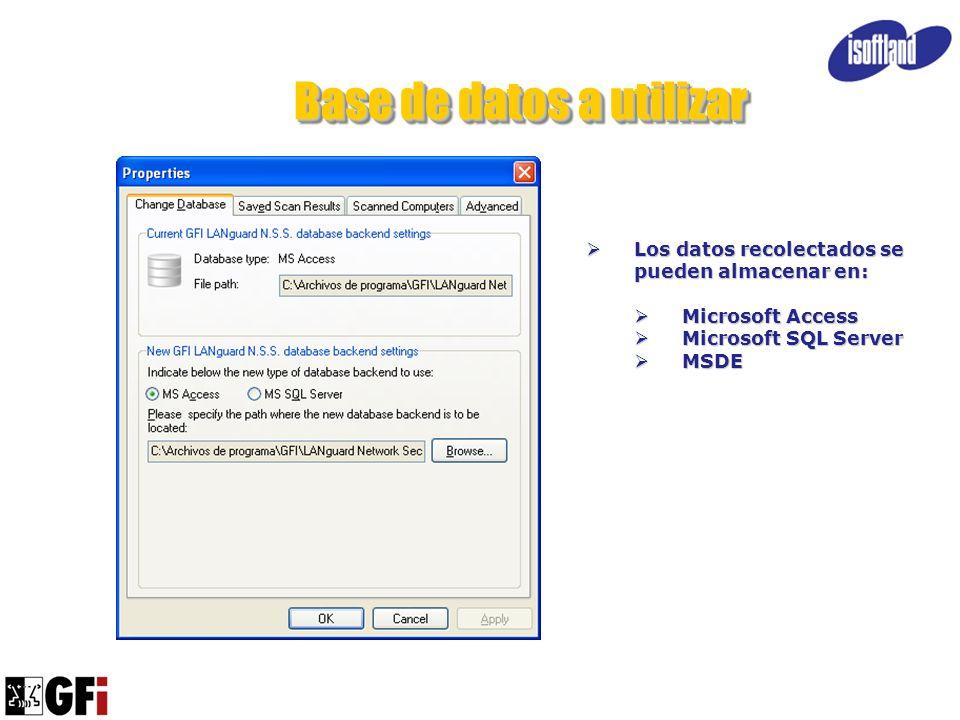 Base de datos a utilizar Los datos recolectados se pueden almacenar en: Los datos recolectados se pueden almacenar en: Microsoft Access Microsoft Acce