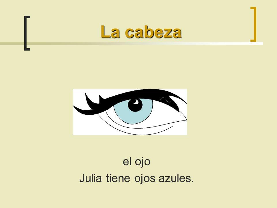 el ojo Julia tiene ojos azules. La cabeza