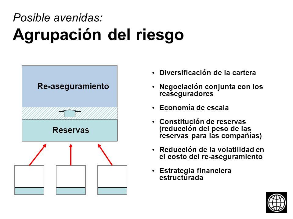 Diversificación de la cartera Negociación conjunta con los reaseguradores Economía de escala Constitución de reservas (reducción del peso de las reservas para las compañías) Reducción de la volatilidad en el costo del re-aseguramiento Estrategia financiera estructurada Posible avenidas: Agrupación del riesgo Reservas Re-aseguramiento
