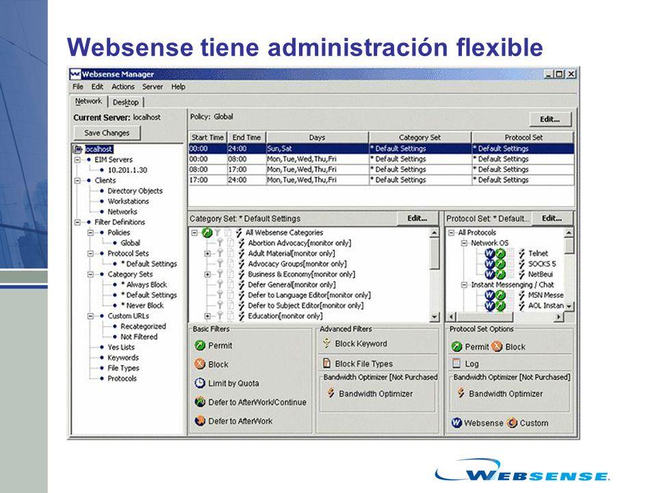 Websense tiene administración flexible Identificación transparente de usuarios –Dominios NT, Active Directory –Novell eDirectory –Autenticación RADIUS