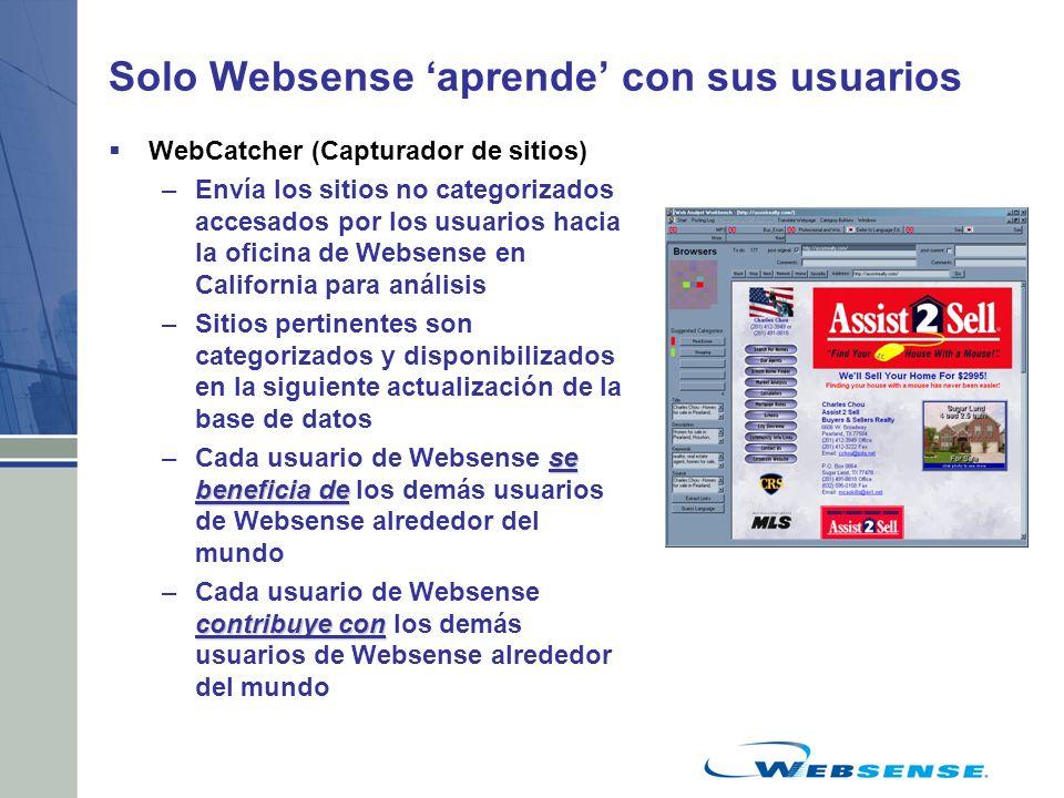 Solo Websense aprende con sus usuarios WebCatcher (Capturador de sitios) –Envía los sitios no categorizados accesados por los usuarios hacia la oficin