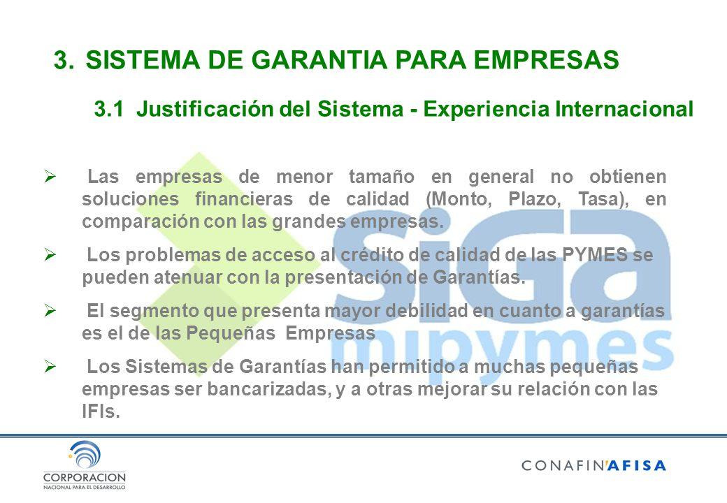 3. SISTEMA DE GARANTIA PARA EMPRESAS 3.1Justificación del Sistema - Experiencia Internacional Las empresas de menor tamaño en general no obtienen solu