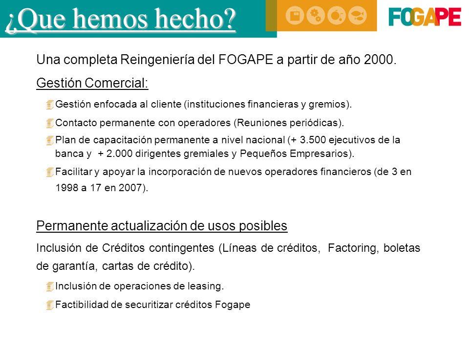 ¿Que hemos hecho. Una completa Reingeniería del FOGAPE a partir de año 2000.