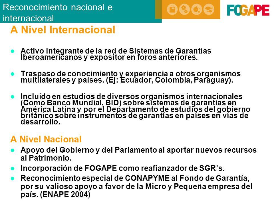 A Nivel Internacional Activo integrante de la red de Sistemas de Garantías Iberoamericanos y expositor en foros anteriores.