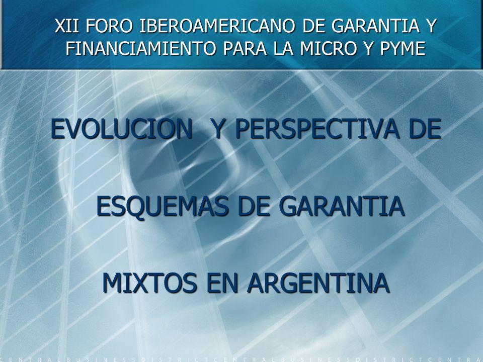 XII FORO IBEROAMERICANO DE GARANTIA Y FINANCIAMIENTO PARA LA MICRO Y PYME EVOLUCION Y PERSPECTIVA DE ESQUEMAS DE GARANTIA ESQUEMAS DE GARANTIA MIXTOS EN ARGENTINA