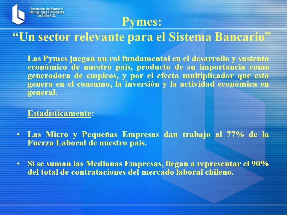 Pymes: Un sector relevante para el Sistema Bancario Las Pymes juegan un rol fundamental en el desarrollo y sustento económico de nuestro país, producto de su importancia como generadora de empleos, y por el efecto multiplicador que esto genera en el consumo, la inversión y la actividad económica en general.