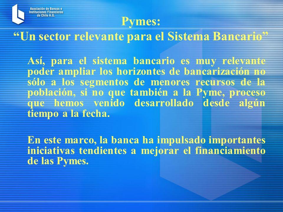 Así, para el sistema bancario es muy relevante poder ampliar los horizontes de bancarización no sólo a los segmentos de menores recursos de la población, si no que también a la Pyme, proceso que hemos venido desarrollado desde algún tiempo a la fecha.