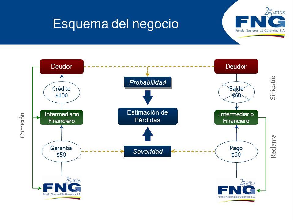 Enfoque del modelo Basado en los principios de compartición de riesgo, atomización de deudores y la automatización de las garantías, el FNG ha diseñado los modelos con un enfoque semejante al de seguros.