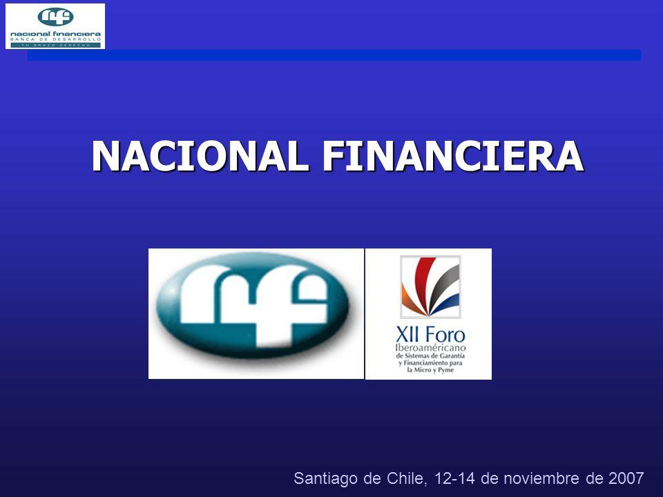 NACIONAL FINANCIERA Santiago de Chile, 12-14 de noviembre de 2007