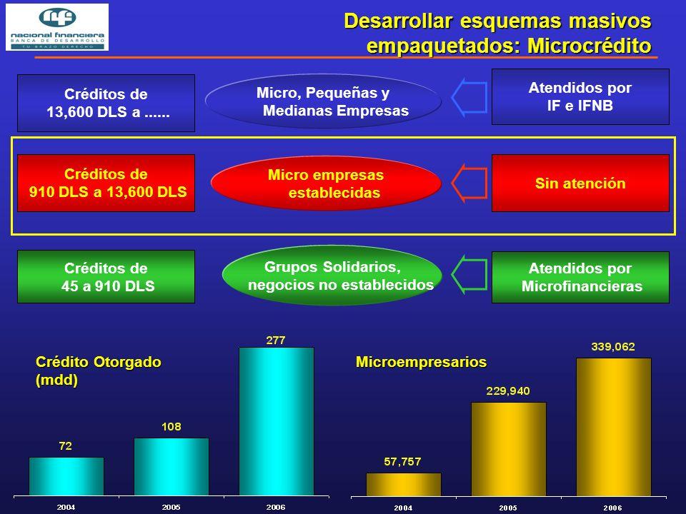 Desarrollar esquemas masivos empaquetados: Microcrédito Créditos de 45 a 910 DLS Créditos de 910 DLS a 13,600 DLS Créditos de 13,600 DLS a......