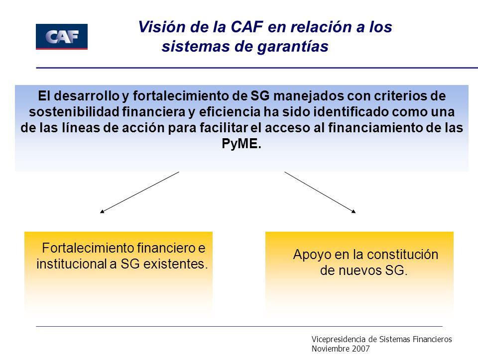 Vicepresidencia de Sistemas Financieros Noviembre 2007 El desarrollo y fortalecimiento de SG manejados con criterios de sostenibilidad financiera y eficiencia ha sido identificado como una de las líneas de acción para facilitar el acceso al financiamiento de las PyME.
