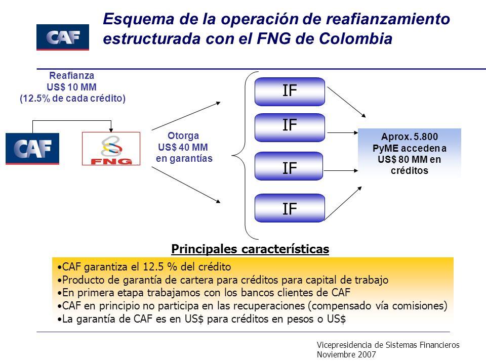 Vicepresidencia de Sistemas Financieros Noviembre 2007 CAF garantiza el 12.5 % del crédito Producto de garantía de cartera para créditos para capital de trabajo En primera etapa trabajamos con los bancos clientes de CAF CAF en principio no participa en las recuperaciones (compensado vía comisiones) La garantía de CAF es en US$ para créditos en pesos o US$ Esquema de la operación de reafianzamiento estructurada con el FNG de Colombia Aprox.