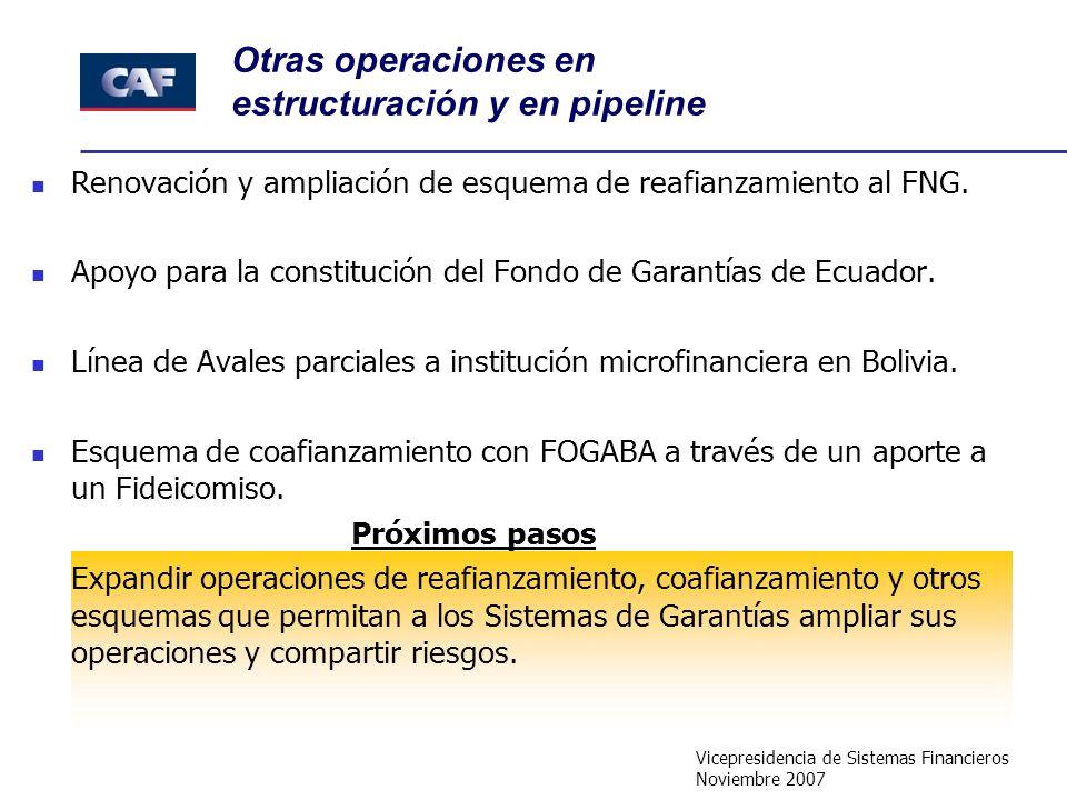 Vicepresidencia de Sistemas Financieros Noviembre 2007 Otras operaciones en estructuración y en pipeline Renovación y ampliación de esquema de reafianzamiento al FNG.