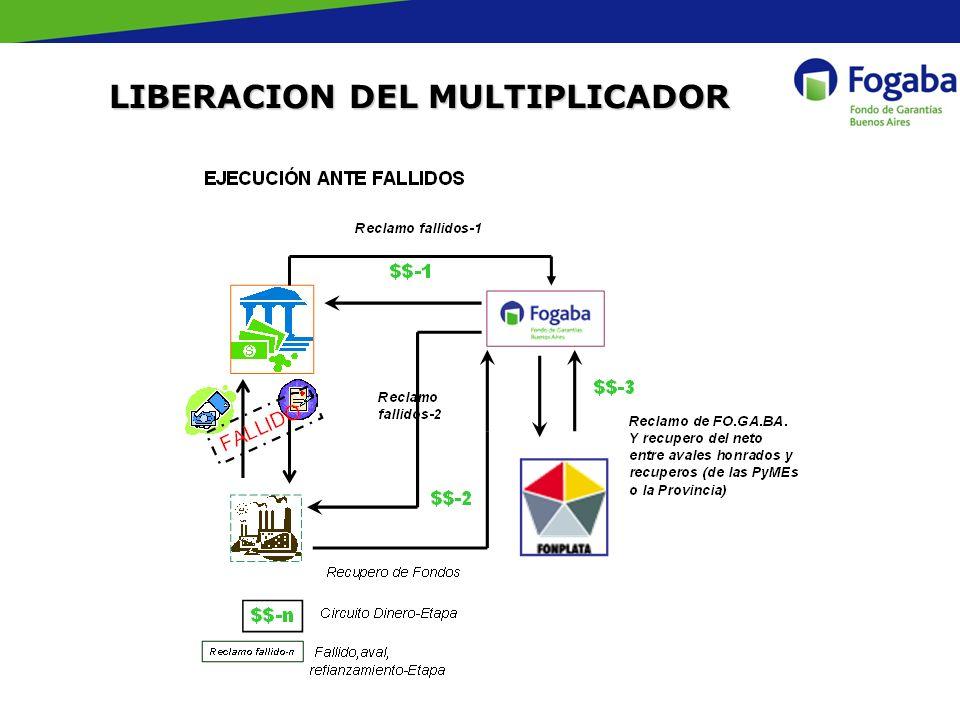 LIBERACION DEL MULTIPLICADOR