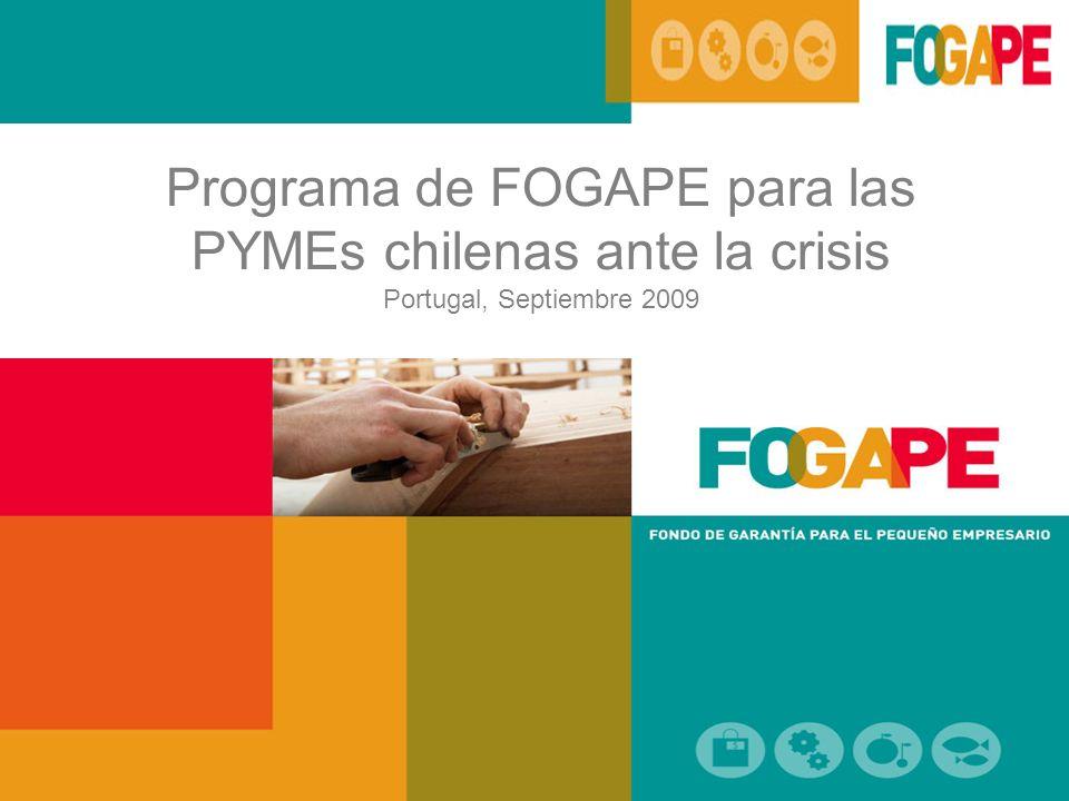 Programa de FOGAPE para las PYMEs chilenas ante la crisis Portugal, Septiembre 2009