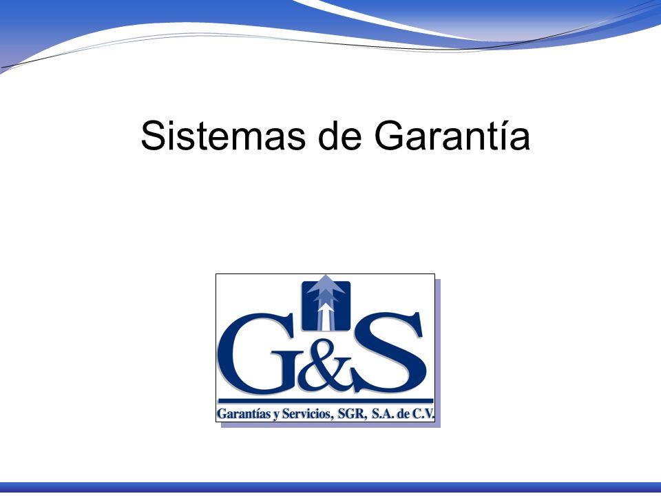 Los Sistemas de Garantías y sus diversas manifestaciones Existen varias formas de sistemas de garantías: Fondo de Garantía, Programa de Garantía y Sociedades de Garantía Estos modelos de sistemas son heterogéneos variando su calidad, seguridad, eficacia y relevancia.