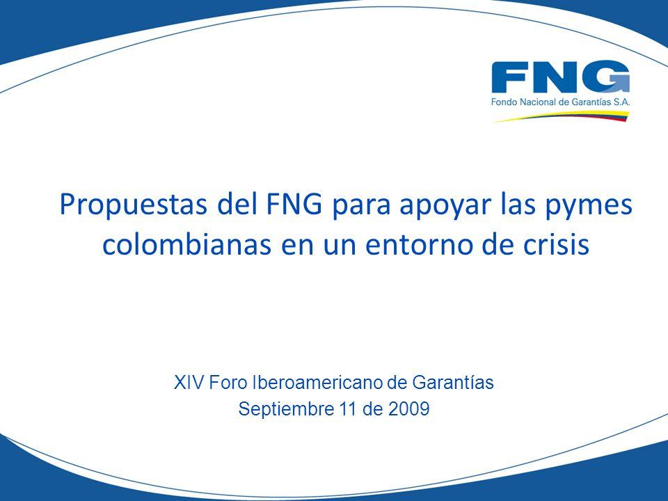 Propuestas del FNG para apoyar las pymes colombianas en un entorno de crisis XIV Foro Iberoamericano de Garantías Septiembre 11 de 2009