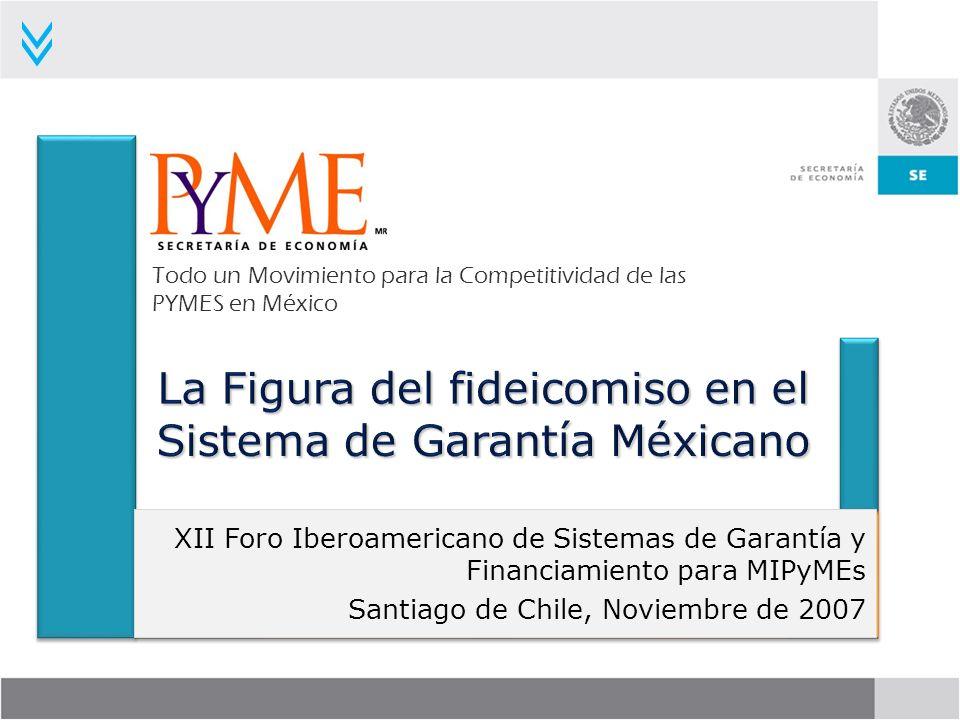 Cuyas características son: Como Fideicomitente firma contratos de Fideicomisos de Inversión y Administración en los cuales están depositados los recursos de la Secretaría de Economía para los Programas de Garantías.