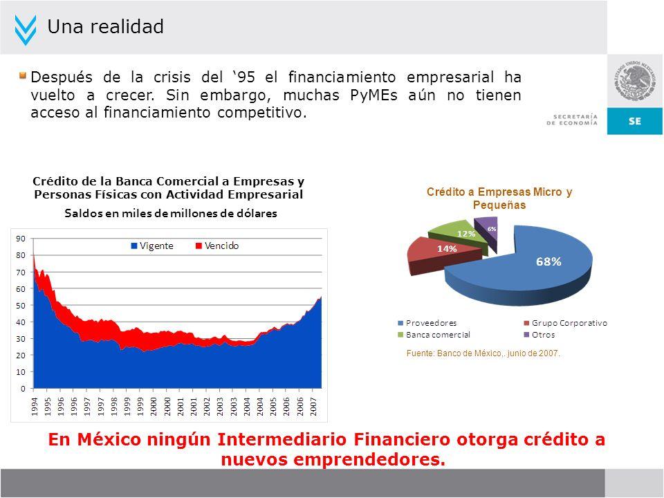 Después de la crisis del 95 el financiamiento empresarial ha vuelto a crecer. Sin embargo, muchas PyMEs aún no tienen acceso al financiamiento competi