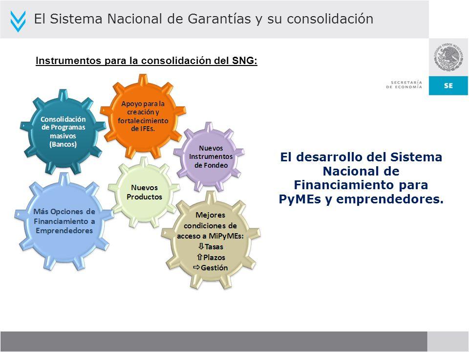 Instrumentos para la consolidación del SNG: El Sistema Nacional de Garantías y su consolidación El desarrollo del Sistema Nacional de Financiamiento p