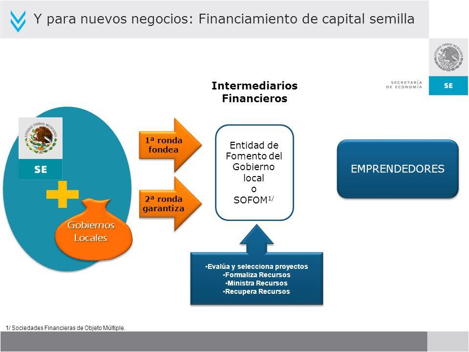 Entidad de Fomento del Gobierno local o SOFOM 1/ 1ª ronda fondea 1ª ronda fondea Evalúa y selecciona proyectos Formaliza Recursos Ministra Recursos Re