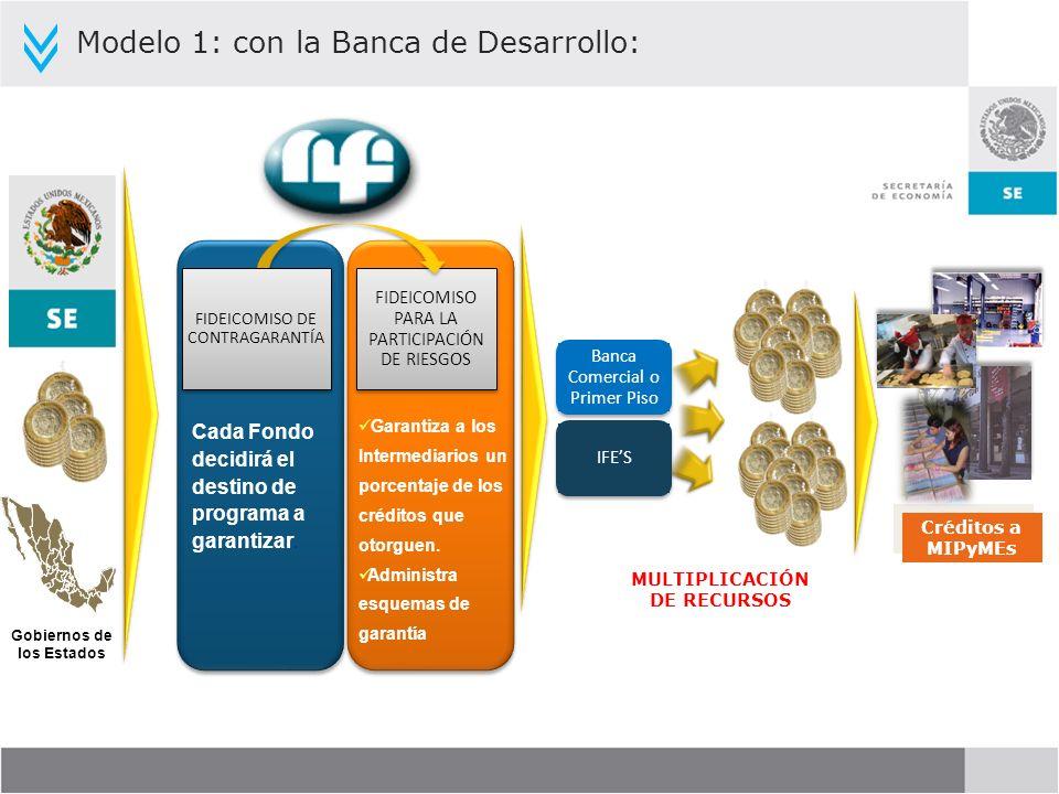 Modelo 1: con la Banca de Desarrollo: Gobiernos de los Estados