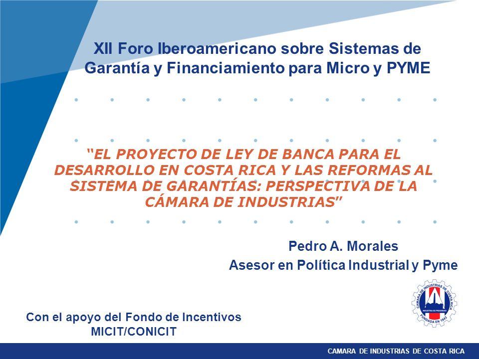 CAMARA DE INDUSTRIAS DE COSTA RICA Pedro A. Morales Asesor en Política Industrial y Pyme EL PROYECTO DE LEY DE BANCA PARA EL DESARROLLO EN COSTA RICA