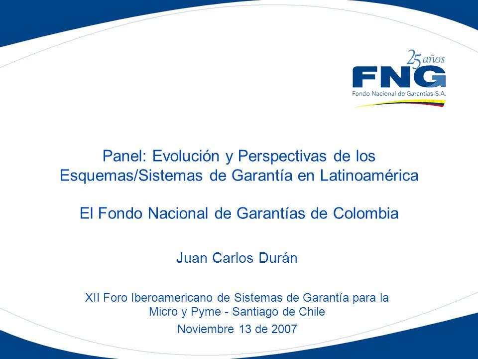 Panel: Evolución y Perspectivas de los Esquemas/Sistemas de Garantía en Latinoamérica El Fondo Nacional de Garantías de Colombia Juan Carlos Durán XII