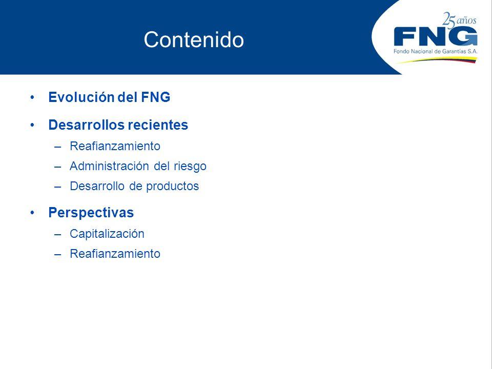 Contenido Evolución del FNG Desarrollos recientes –Reafianzamiento –Administración del riesgo –Desarrollo de productos Perspectivas –Capitalización –R