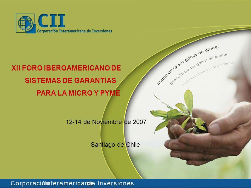 Corporación Interamericana de Inversiones XII FORO IBEROAMERICANO DE SISTEMAS DE GARANTIAS PARA LA MICRO Y PYME 12-14 de Noviembre de 2007 Santiago de