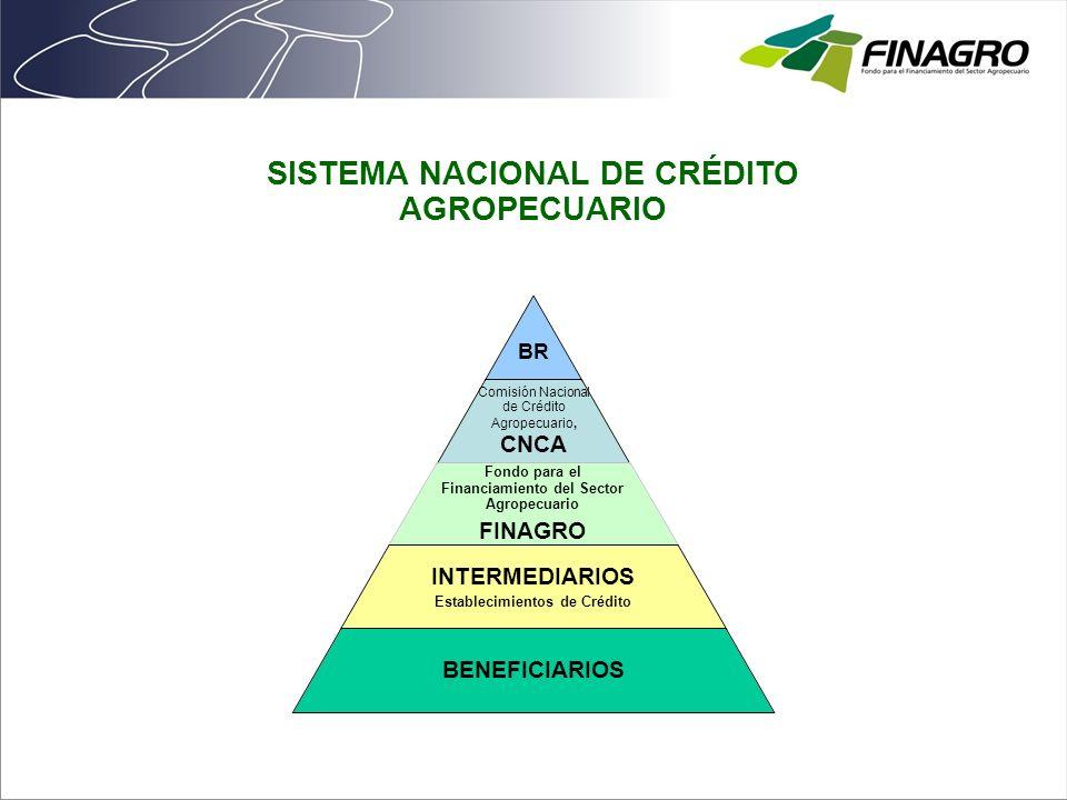 SISTEMA NACIONAL DE CRÉDITO AGROPECUARIO BR Comisión Nacional de Crédito Agropecuario, CNCA Fondo para el Financiamiento del Sector Agropecuario FINAG