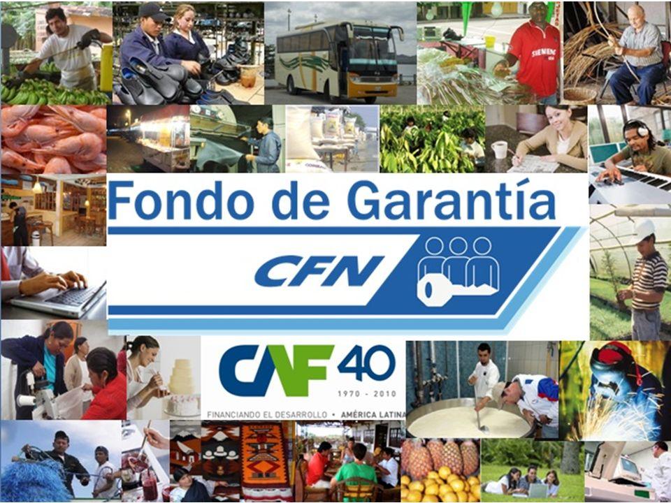 Subgerencia Nacional de Fondo de Garantía