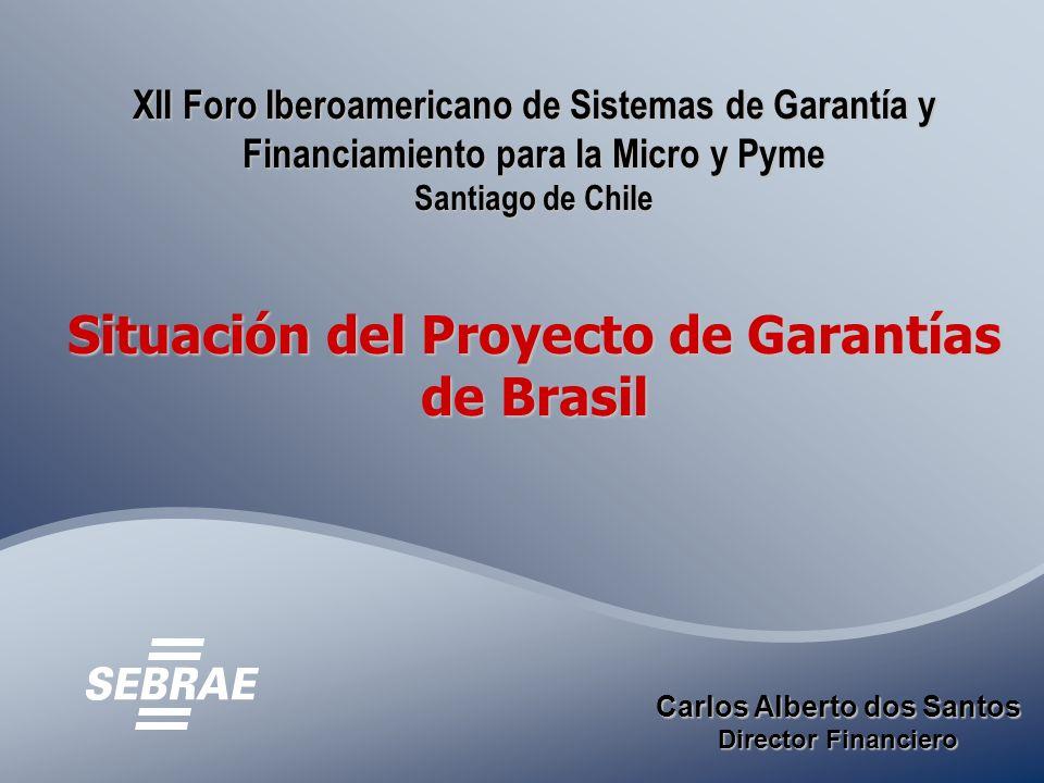 XII Foro Iberoamericano de Sistemas de Garantía y Financiamiento para la Micro y Pyme Santiago de Chile Situación del Proyecto de Garantías de Brasil Carlos Alberto dos Santos Director Financiero